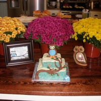 Owl Shower Cake - To Match Invitations Rice Krispy cake made to match the baby shower invitiations that were pictured to the left of the cake. White chocolate icing and a RKT Owl...