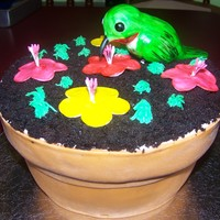 "Potted Plant Cake Made for a friend at work...just to see if I could! Bird and flowers made out of fondant. The cake was chocolate so I saved the ""..."