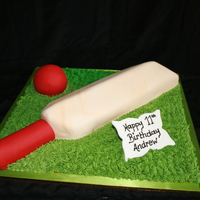 Anyone For Cricket Chocolate mud, Fondant trim. Buttercream grass