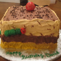 "Very Hungry Caterpillar 8"" square cake (4 layers) Darn Good Chocolate Cake iced with VBC. The customer who ordered this cake from me was doing the whole..."