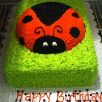 Lily Bug   Made this cake for my niece's 3rd birthday! She <3 ladybugs!