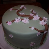 Cherry Blossom Cake Fondant covered lemon cake with my attempt at Cherry Blossoms.