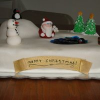Christmas Winter Wonderland Cake Spice Cake done for my family Christmas party. Filled with vanilla buttercream and vanilla buttercream under the fondant. Made all the...