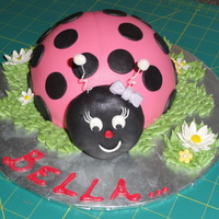 Happy Bug Made this for a quick 4th birthday party. They really enjoyed it, and I enjoyed doing a quick and easy cake. TFL!
