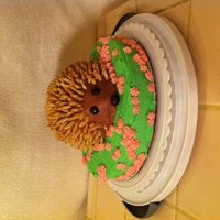 Hedgehog Cake  Needed to use up some icing, so made this. I didn't have enough icing to crumbcoat, so there are lots of crumbs in the icing. I'm...
