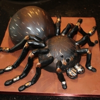 Tarantula Spider Cake Chocolate Fudge cake filled and covered in chooclate ganache and then covered in fondant