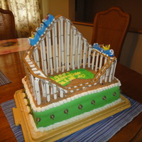 Giant Dipper Roller Coaster My Daughter wanted to have her party at the local amusement park so this was a fitting cake