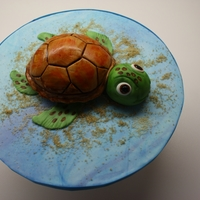 Turtle This was done today, It was done in a hurry for a little boy. The body of the turtle is cake and is just a little bigger then a cupcake,...