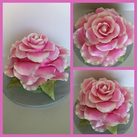 Giant Pink Rose Cake this cake was about 14 inches wide and about 12 inches tall. made the cake in kind of a torpedo shape and the just place petals on in as if...