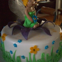 Jaden's 1St Birthday   tinkerbell cake, wings are made with geletin
