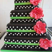 Black With White Polka Dots And Pink Flowers   Black with white polka dots and pink flowers