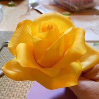 Practice Rose  took a lifesize light weight rose class with Glenda Galvez at ICES this year. This is a practice piece I did about a month later. Trying to...