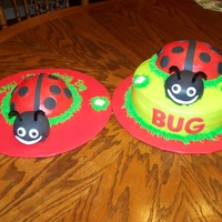 Lady Bug Cake   This is a cute cake I made for a friend.