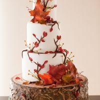 Autumn Wedding Cake Bottom tier is done with royal to mimic tree bark & given depth with airbrushing. Gum paste leaves and tiny birds. (photo by Mark...