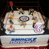 Wwf Cake   This was for a 3 y/o birthday party. The little wreslers are plastic toys. I colored spaghetti noodles for the ropes.