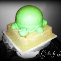 3D Turtle Cake My First 3D Turtle Cake!