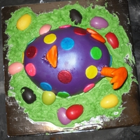 Just Hatched easter cake for my family. chocolate egg made from candy melts poured in a devil egg platter red velvet with cream cheese filling . My11...