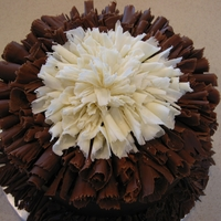 Chocolate Curls Cake   Chocolate cake covered with ganache and decorated with white and dark chocolate shaved curls.