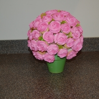Rose Bush I made this using many cupcakes 48-54 mini cupcakes. My first time making a rose bouquet.