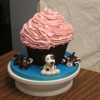 Giant Cupcake For National Cupcake Day Held a bake sale of National Cupcake Day supporting the Ontario Society for Prevention of Cruelty to Animals. Raffled off a giant cupcake!...