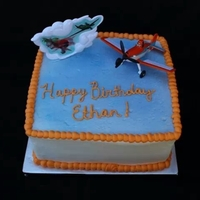 Disney Planes Birthday Cake Disney Planes Birthday Cake