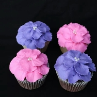 Floral Cupcakes To Match Floral Birthday Cake Chocolate Cupcakes With Almond Buttercream Icing Floral cupcakes to match floral birthday cake. Chocolate cupcakes with almond buttercream icing.