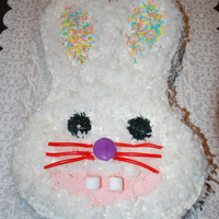 Easter Bunny Cake   I made this cake for my sons Easter Party at school.