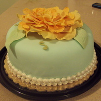 Turquoise And Apricot Finished this one yesterday for my sisters birthday today. It's basically the same as the ivory and peach cake, but in another color...