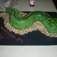Snake Cake My first attempt at using impression matsI made his for my nephew who was having a reptile handler at his party and he loved it.I wasn&#039...