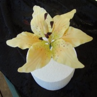 Tigerlily Made in a flower course.My very first tigerlily.Made from coloured gumpaste and highlighted with chalks.TFL