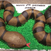 Northern Copperhead Snake All hand sculpted with 3 different flavors of cake. Covered in homemade marshmallow fondant. All edible!