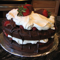 Chocolate Strawberry Shortcake   Made this from scratch, it's a semi-sweet chocolate cake with strawberries, chocolate sauce, and cool whip.