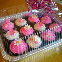 Hot Pink Cupcakes Cupcakes made for a little girl who loves pink.
