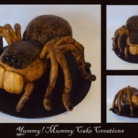 The Tarantula Cake 3D Tarantular, body is carved Mud Cake. Legs are Fondant and wired to his body. This was a very fun cake to make