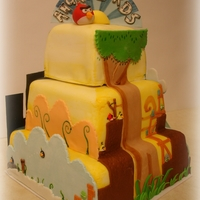 Four Levels Of Angry Birds Cake