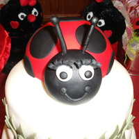 Ladybug my first ladybug cake....ran out of time to add more color and flowers to the rest of the cake BUT i adored my ladybug and wanted to share...