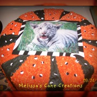 Tiger Print Safari type party with Tiger print cake