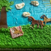 Horse Country Themed Baby Shower Cake 1St Attempt At Covering A Cake In Buttercream Only Fondant Is My Forte Horse/ country themed baby shower cake. 1st attempt at covering a cake in buttercream only (fondant is my forte).