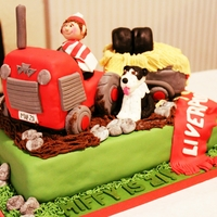 21St Birthday Tractor Cake Was asked to make a cake for a friend's son's 21st birthday. His favourite thngs are his collie dog, Marty, Massey Ferguson...