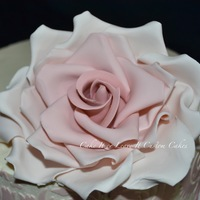 Large Rose Cake April 2013Jpg