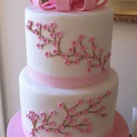 Blossom Christening Cake Double barrell two tiered cake with hand made fondant bow and blossom detail. This cake was very enjoyable to make :)