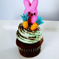 Bunny Cupcake  A milk chocolate cupcake topped with green vanilla buttercream, a dusting of cocoa powder, hand-sculpted fondant carrots, and a Peeps...