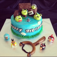 Angry Birds This cake was a joint b-day cake for my niece and nephew who are both Angry Birds OBSESSED!!! A very special thanks to CC member Mooj- not...