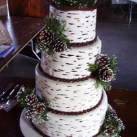 Birch Bark Wedding Cake Easiest cake ever! Toothpick with brown and black gel color made the birch bark look. Bride and groom were married in a National park and...