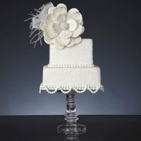 White Night Wedding This small cake appeared in Volume 5 Issue 3 of Cake Central Magazine - the white wedding issue! The cake is sugar coated to make it...