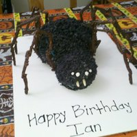 Spider Made this for my husbands birthday (he was born on halloween) Coconut cream cake covered in black colored coconut with chocolate covered...
