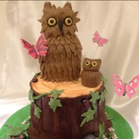Owl And Nature Cake Owls and nature with lady birds mice and butterflies.