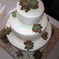 Succulent Wedding Cake Cup Quequitos' signature Mole cake. Fresh succulents
