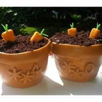 For My Girlfriend Who Loves To Garden A Mini Terra Cotta Pot Fondantchocolate Cake With Edible Carrots For Her 40Th Birthday   For my girlfriend who loves to garden - a mini terra cotta pot (fondant/chocolate cake) with edible carrots for her 40th birthday!