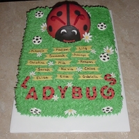 Soccer Ladybugs Daisies this was done for 6 year olds. There team was the ladybugs. Buttercream with fondant accents